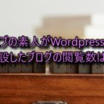 ズブの素人がWordpressで開設したブログの閲覧数は?