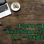 【ブログ9ヶ月】祝☆ブログ収益1万円達成!1PV=1円を超えた!