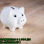《家計簿》30代共働き家庭の2019年1月の収入・支出を公開します!