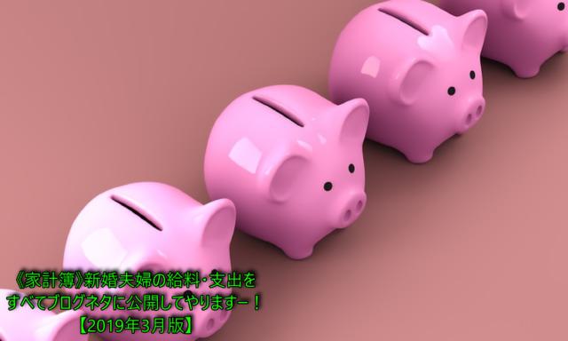 《家計簿》新婚夫婦の給料・支出をすべてブログネタに公開してやりますー!【2019年3月版】